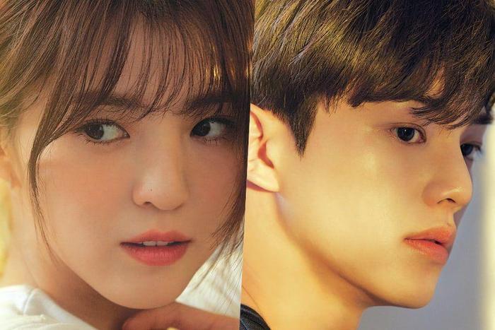 Song Kang có IQ 150 nhưng chưa chắc đã 'cưa đổ' Park Min Young trong phim 'Cruel Story Of Office Romance' Ảnh 4