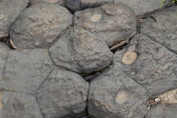Chiêm ngưỡng suối đá cổ trên 100 triệu năm tuổi tại Gia Lai Ảnh 8