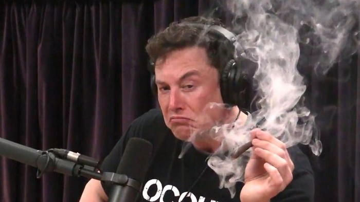 Elon Musk lại đưa ra giả thuyết kỳ lạ về trí tuệ nhân tạo Ảnh 2