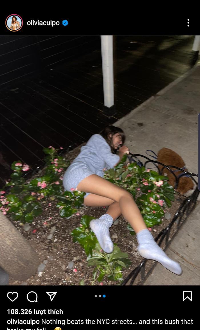 Miss Universe 2012 công khai ảnh say xỉn nát người, ngã nhào cả vào bụi cây bên đường Ảnh 2