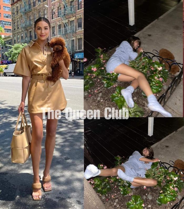 Miss Universe 2012 công khai ảnh say xỉn nát người, ngã nhào cả vào bụi cây bên đường Ảnh 1