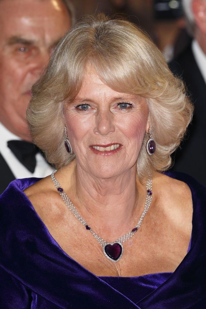 Bí ẩn tủ đồ Hoàng gia: Lóa mắt với loạt trang sức thạch anh tím của phụ nữ hoàng gia Anh Ảnh 4