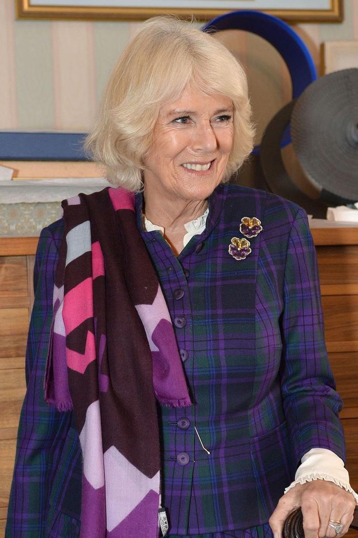 Bí ẩn tủ đồ Hoàng gia: Lóa mắt với loạt trang sức thạch anh tím của phụ nữ hoàng gia Anh Ảnh 11