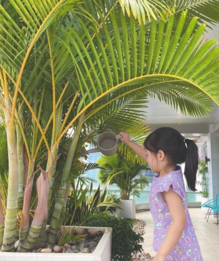 Hoa hậu Đặng Thu Thảo khoe ảnh con gái giúp mẹ tưới cây, ra dáng chị cả trong gia đình Ảnh 1