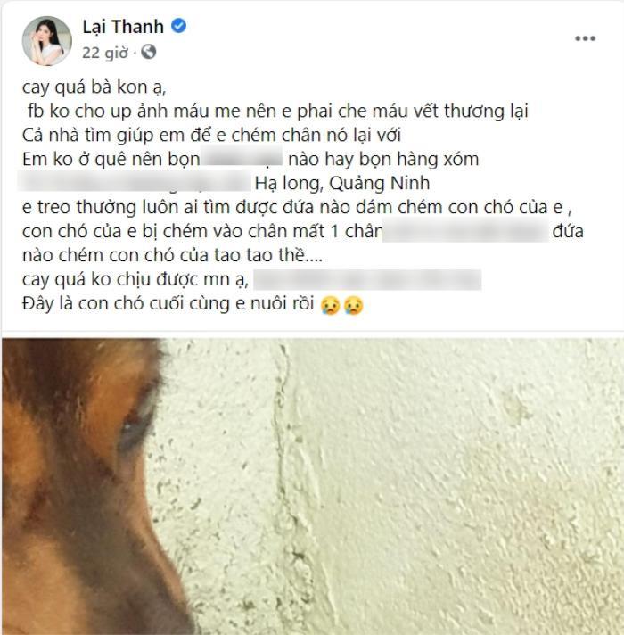 'Tình cũ Quang Lê' phẫn nộ, treo thưởng truy tìm kẻ chém mất chân chú chó cưng
