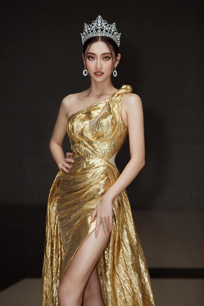 Lương Thùy Linh lần đầu đáp trả tin đồn mua giải Hoa hậu nhờ gia thế khủng Ảnh 6