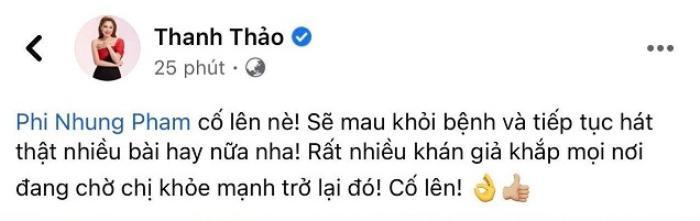 Thanh Thảo 'dằn mặt' anti-fan mỉa mai giữa lúc Phi Nhung bị Covid-19: Đừng hả hê, cười cợt Ảnh 2