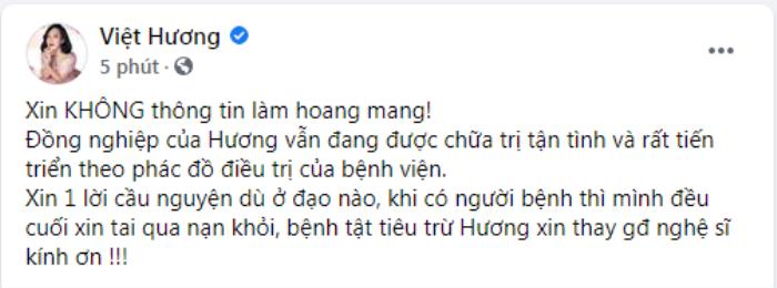Đàm Vĩnh Hưng và dàn sao Việt 'hiệp lực' cầu nguyện cho Phi Nhung vượt qua bạo bệnh Ảnh 8