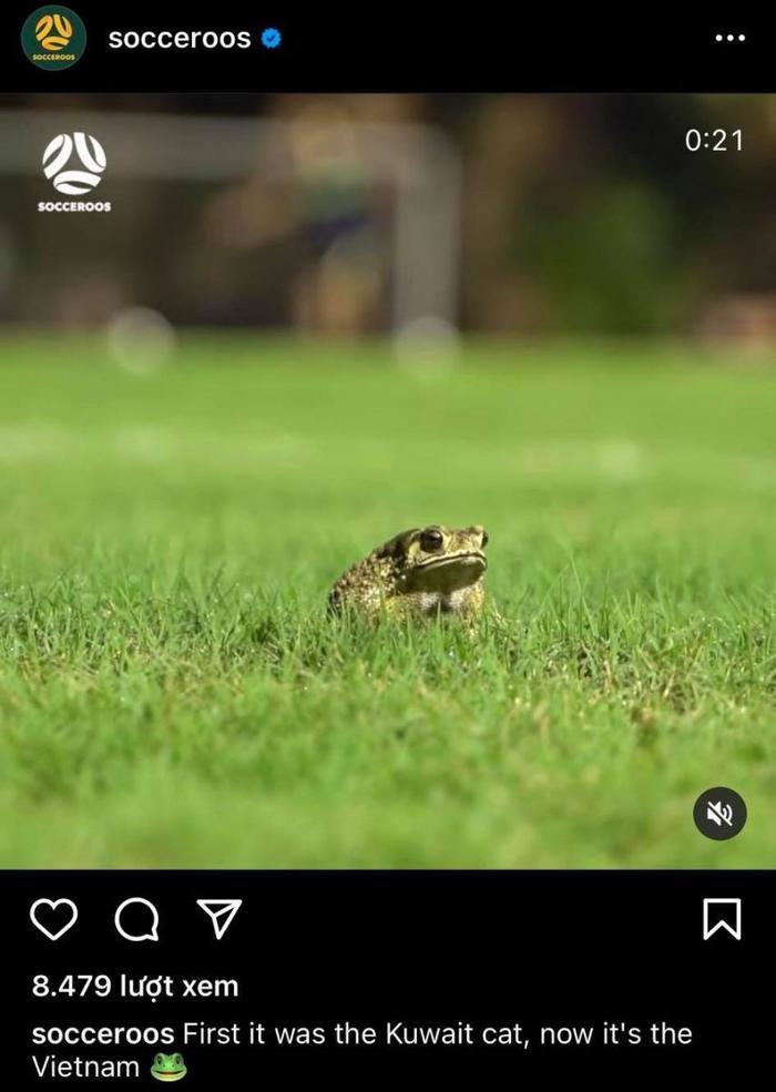 Phóng viên Úc chê sân Mỹ Đình giống 'bãi cỏ cho bò gặm' Ảnh 2