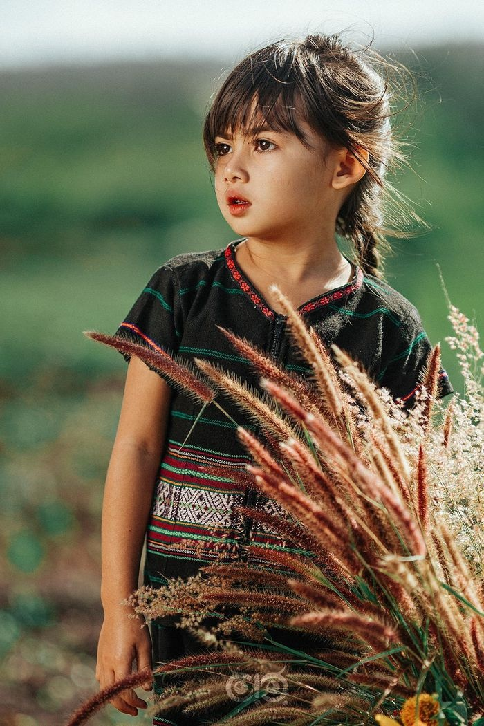 Bộ ảnh cô bé có 'đôi mắt Pleiku' đẹp thiên thần gây bão cộng đồng mạng Ảnh 5