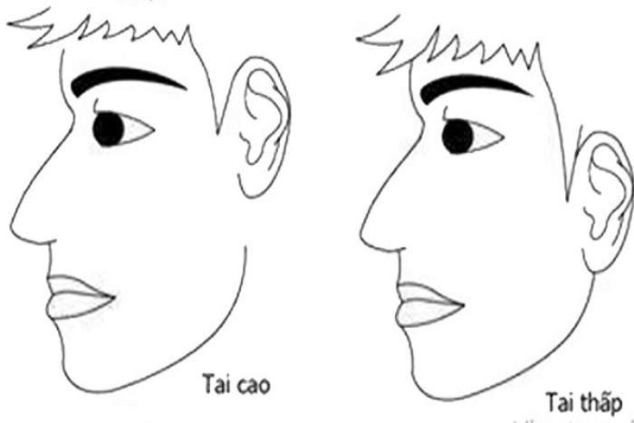Phú quý hay bần tiện, liếc qua tai là biết, bạn có kiểu tai như thế nào?