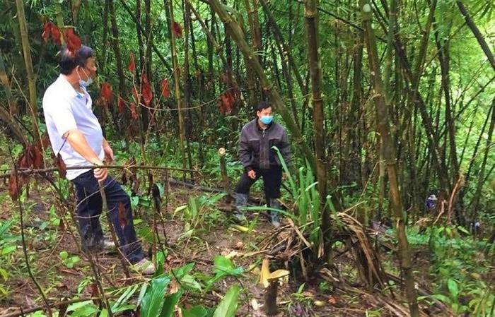 Phát hiện thi thể trơ xương trong rừng sâu ở Đắk Nông Ảnh 1
