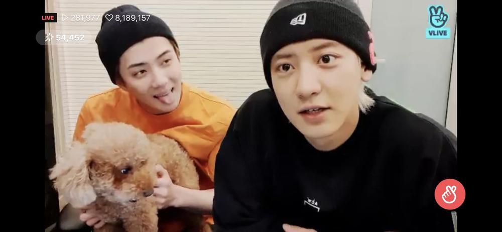 Chanyeol và Sehun (EXO) bị giám đốc SM Entertainment trách mắng vì tự ý tung nhạc mới mà không xin phép? Ảnh 4