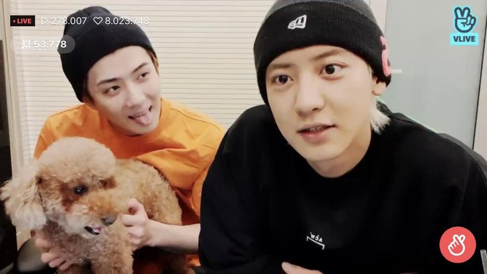Chanyeol và Sehun (EXO) bị giám đốc SM Entertainment trách mắng vì tự ý tung nhạc mới mà không xin phép? Ảnh 1