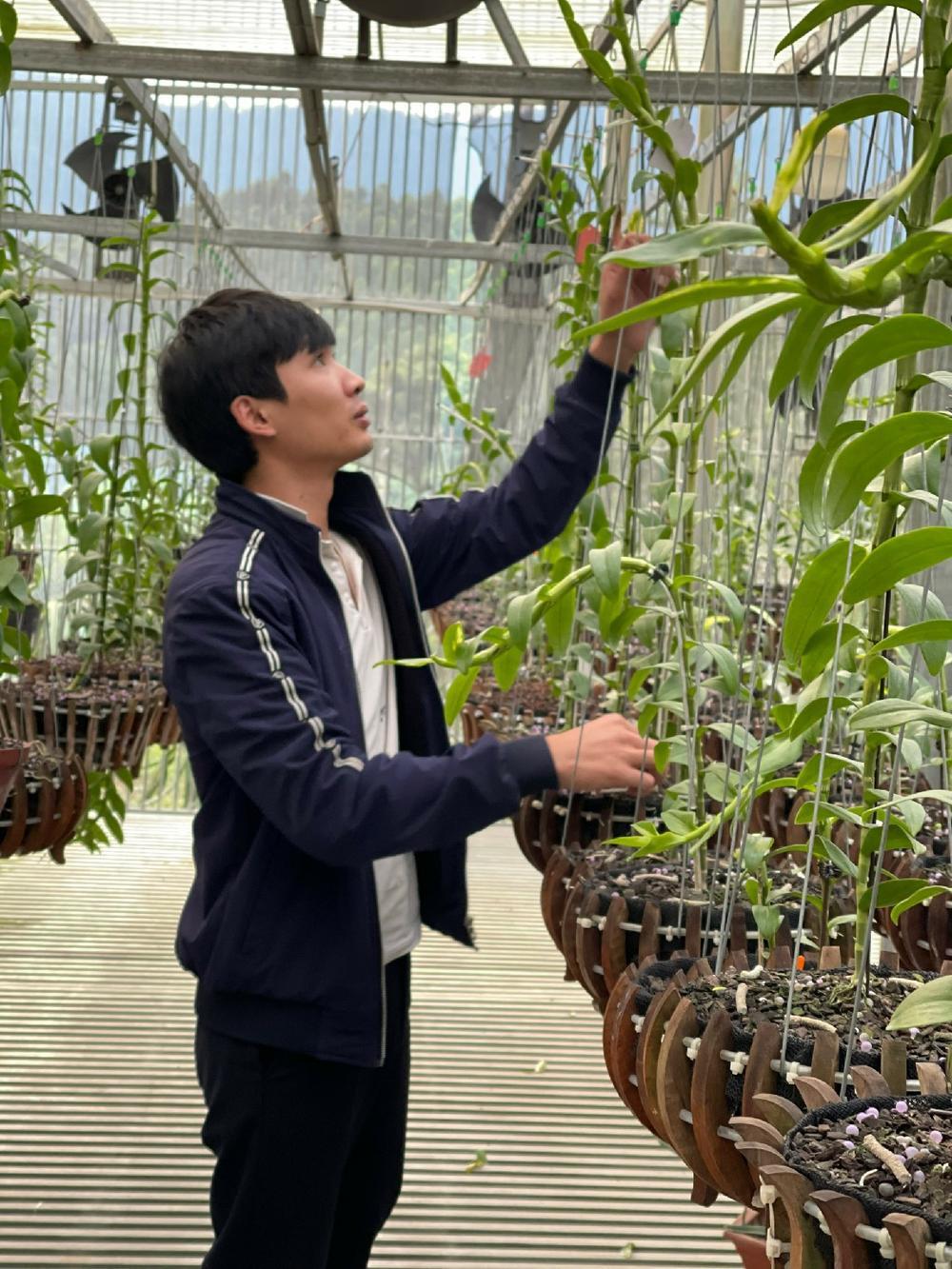 9X Nguyễn Văn Tùng 'chơi lan để thỏa niềm đam mê' Ảnh 1