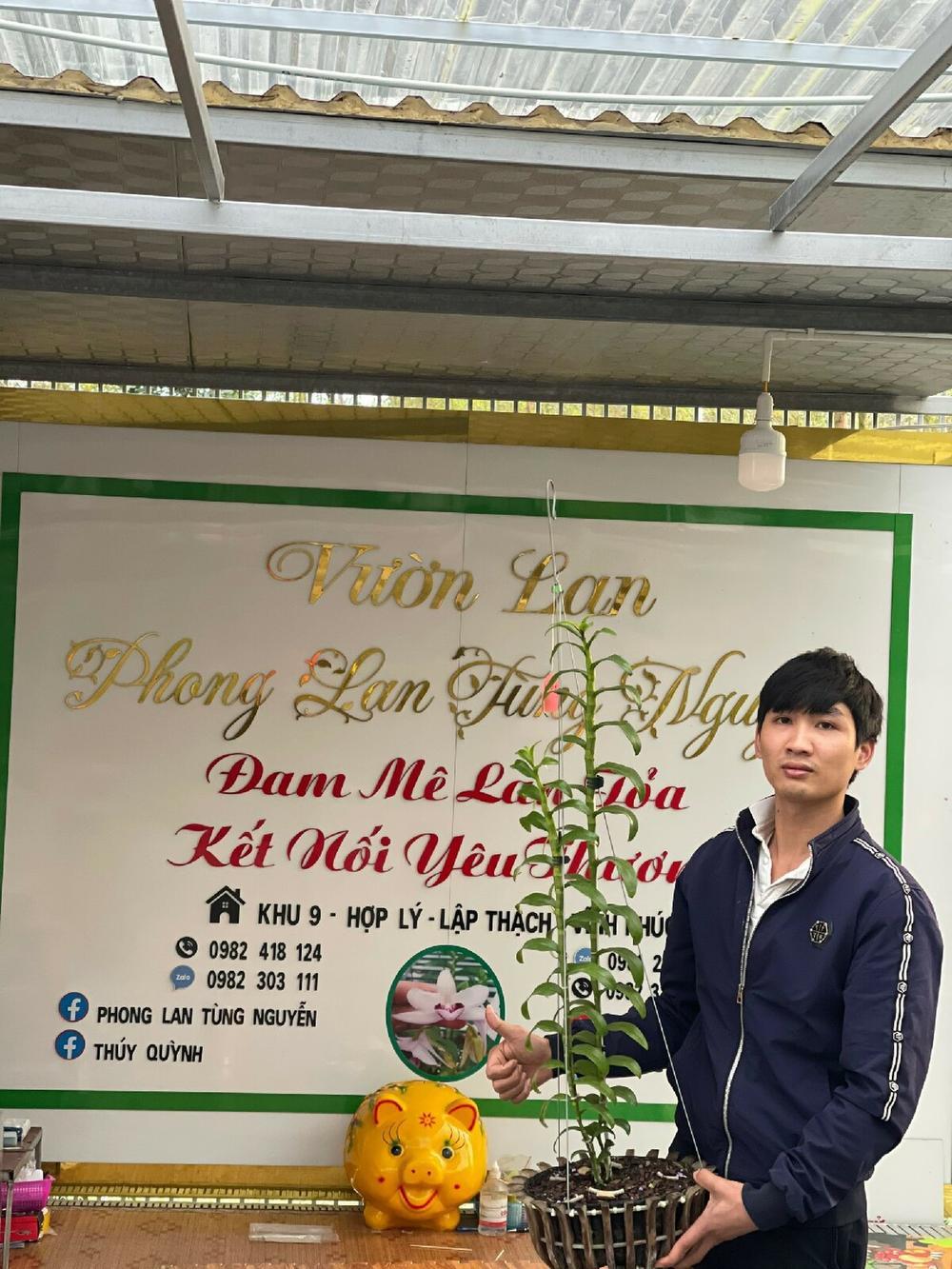 9X Nguyễn Văn Tùng 'chơi lan để thỏa niềm đam mê' Ảnh 3