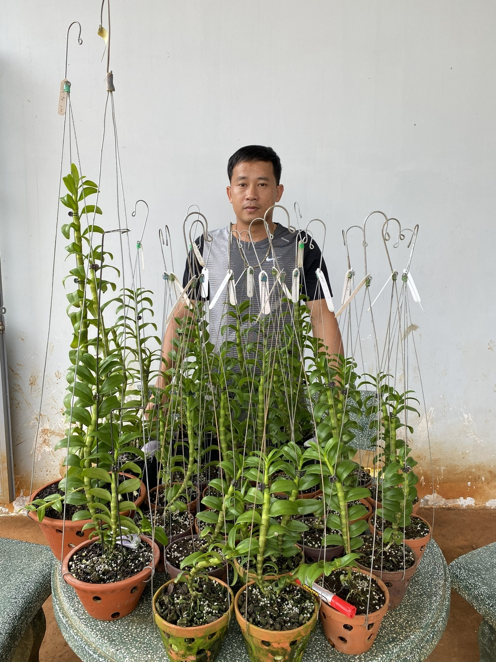 Thầy giáo Phạm Thăng Bằng sở hữu vườn lan giá trị với hơn 10.000 chậu Ảnh 1