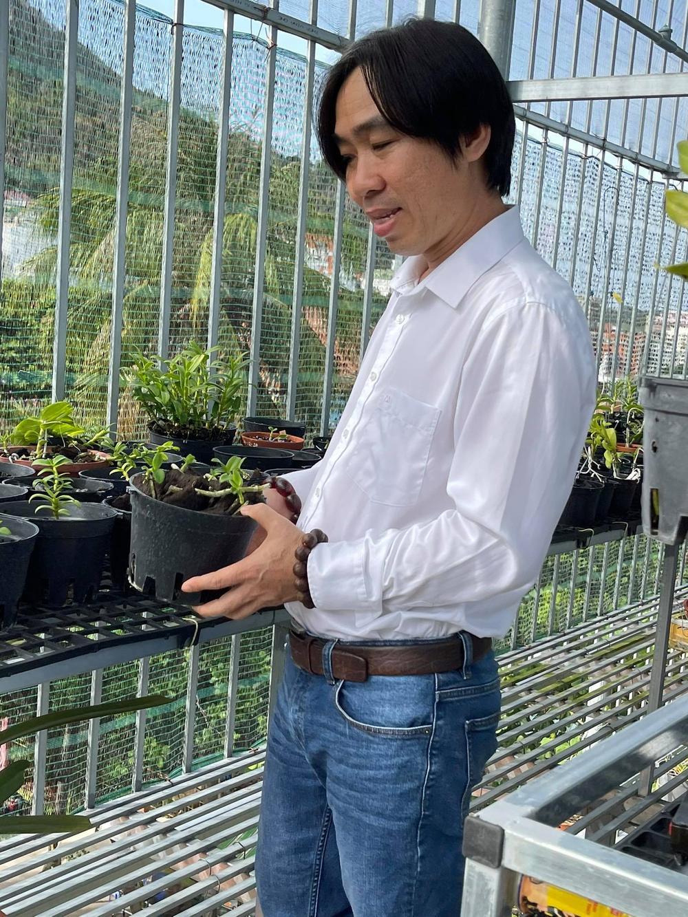 Ông chủ Nguyễn Huy Bình và vườn lan 'khủng' nhiều người ngưỡng mộ Ảnh 5
