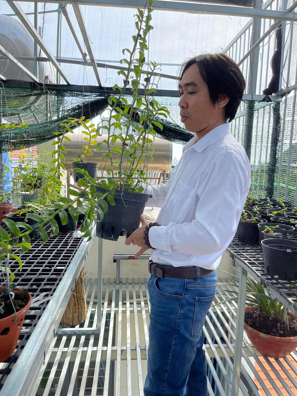 Ông chủ Nguyễn Huy Bình và vườn lan 'khủng' nhiều người ngưỡng mộ Ảnh 2