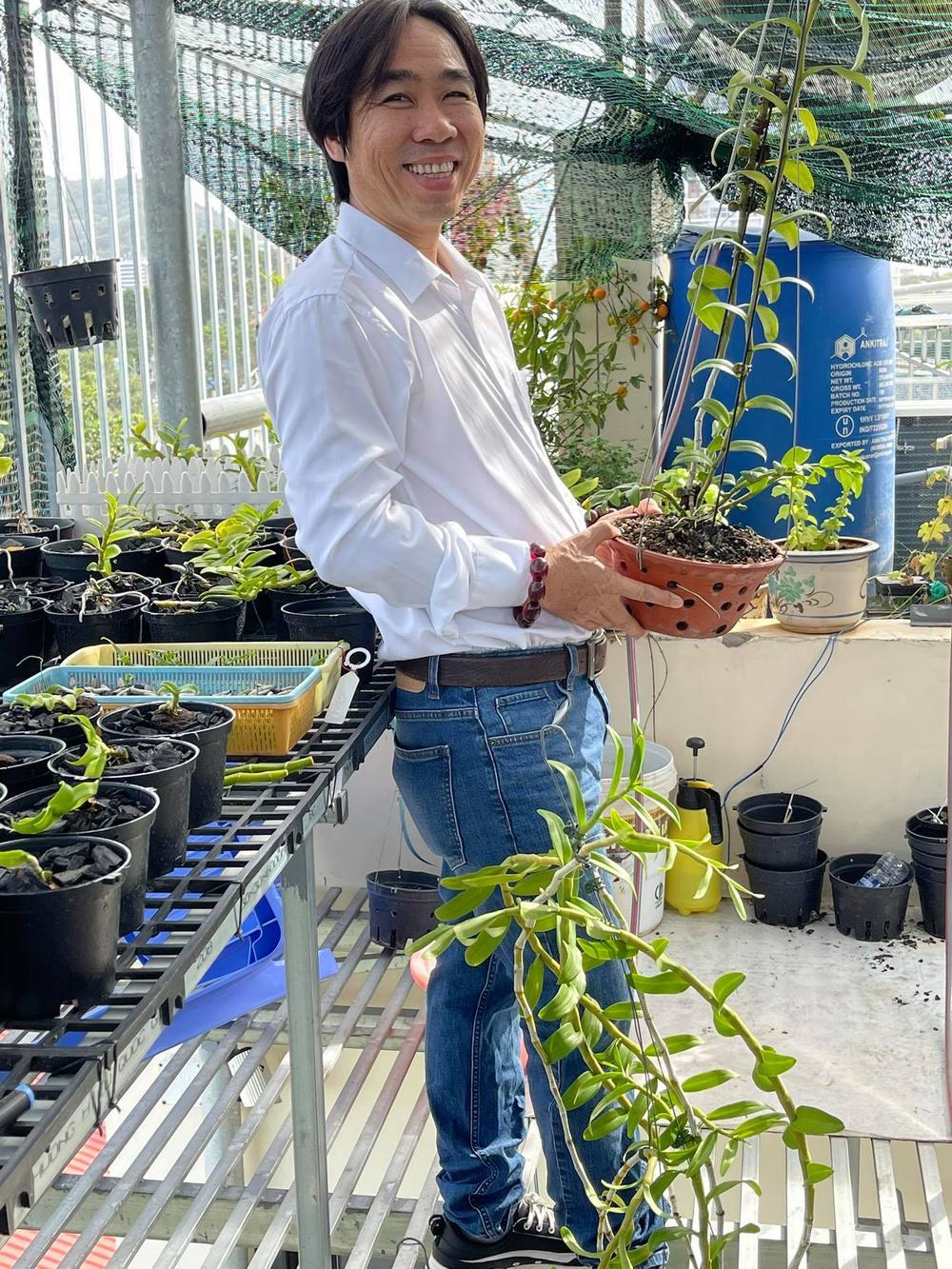 Ông chủ Nguyễn Huy Bình và vườn lan 'khủng' nhiều người ngưỡng mộ Ảnh 3