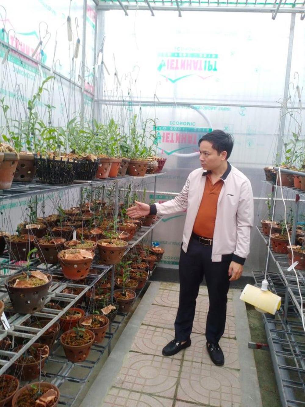 Ông chủ 7X Mạnh Hùng và bí quyết thành công khi trồng lan Ảnh 5
