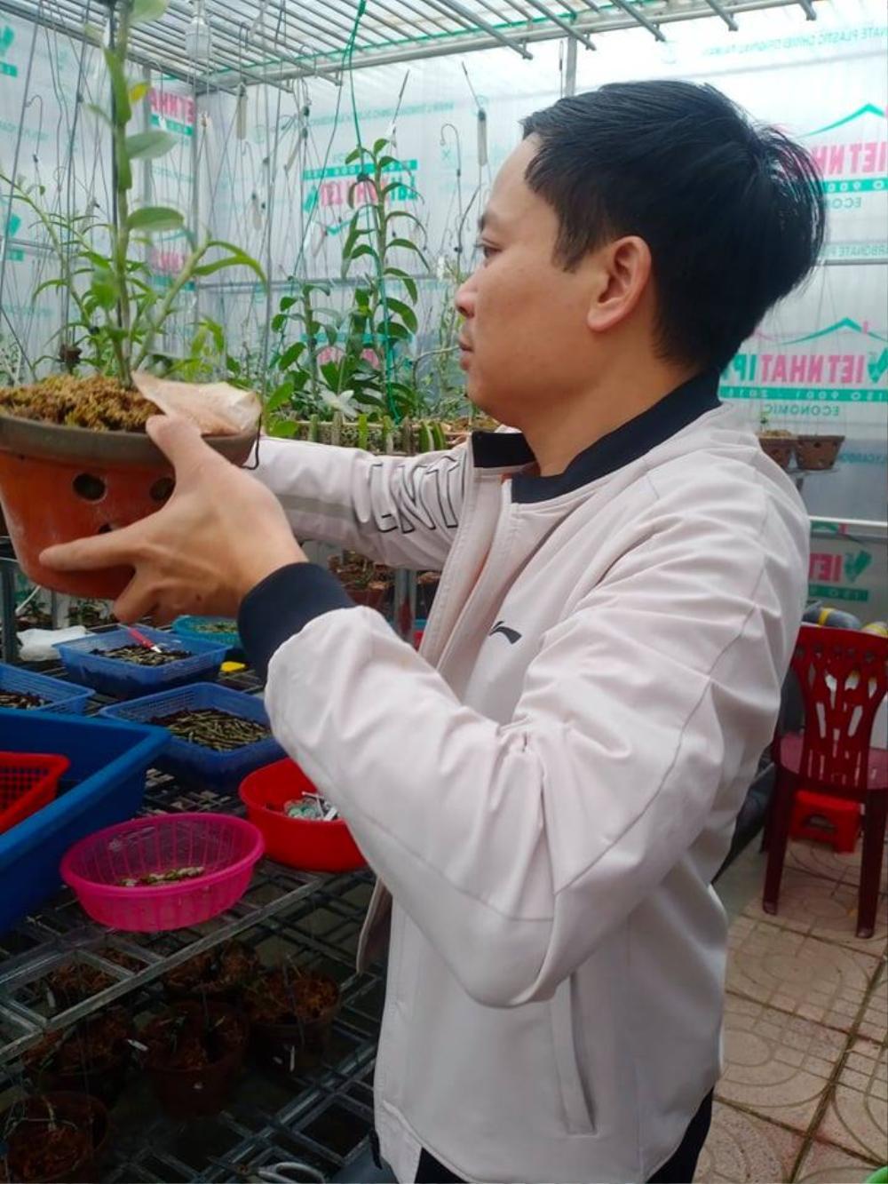 Ông chủ 7X Mạnh Hùng và bí quyết thành công khi trồng lan Ảnh 9