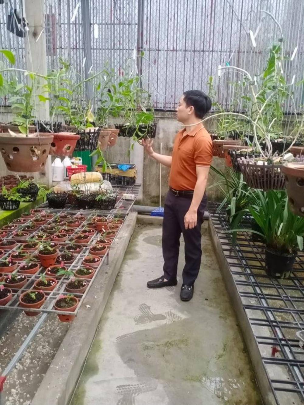 Ông chủ 7X Mạnh Hùng và bí quyết thành công khi trồng lan Ảnh 4