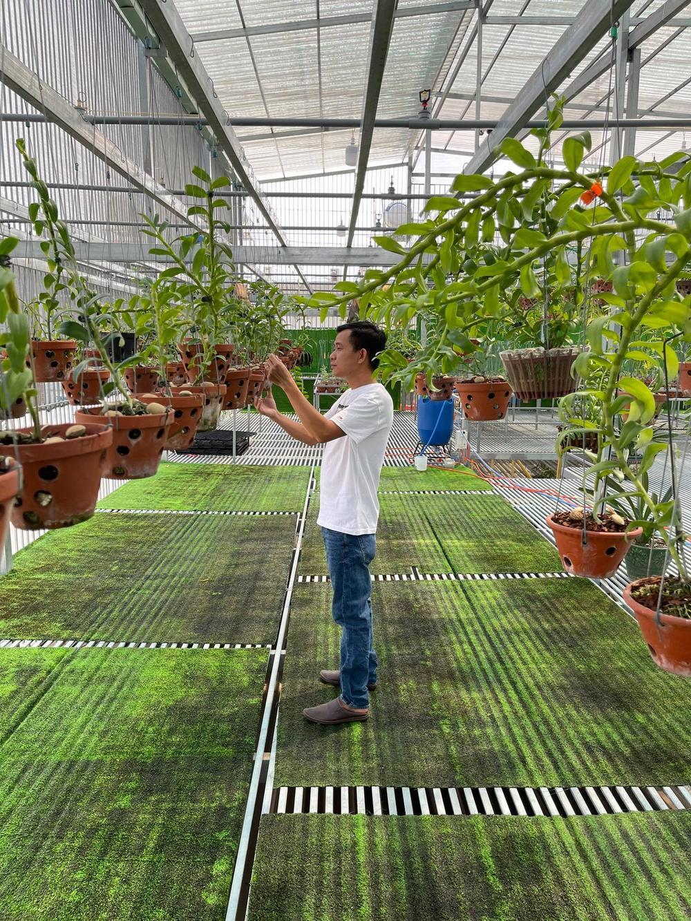 Phạm Minh Minh: Ông chủ vườn lan đi từ thử thách tới thành công Ảnh 1