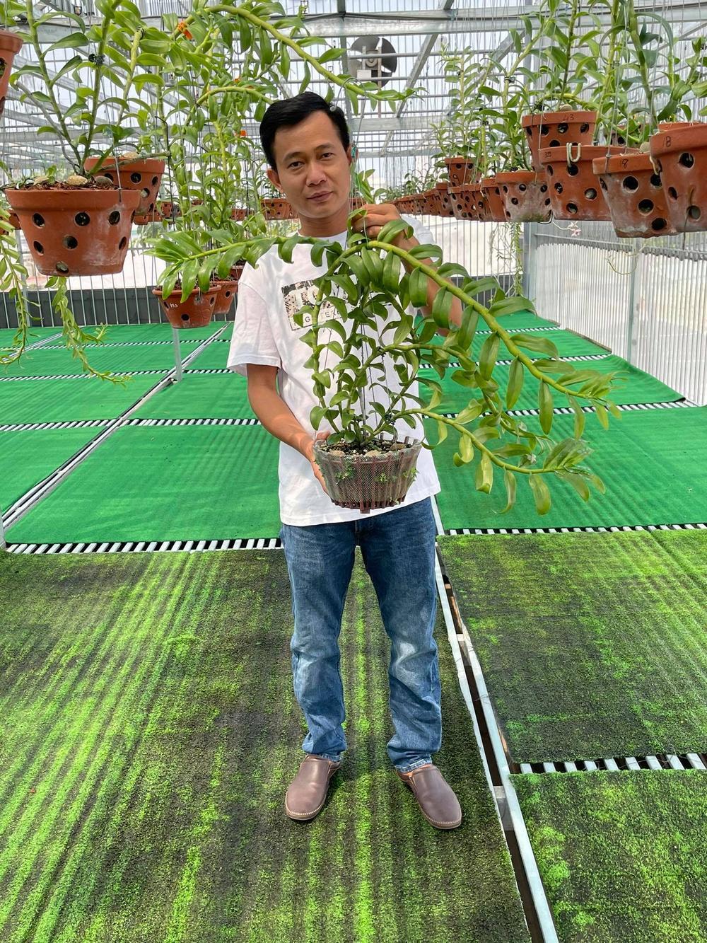 Phạm Minh Minh: Ông chủ vườn lan đi từ thử thách tới thành công Ảnh 3
