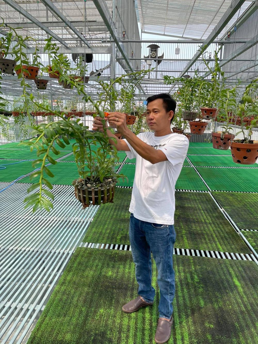 Phạm Minh Minh: Ông chủ vườn lan đi từ thử thách tới thành công Ảnh 4