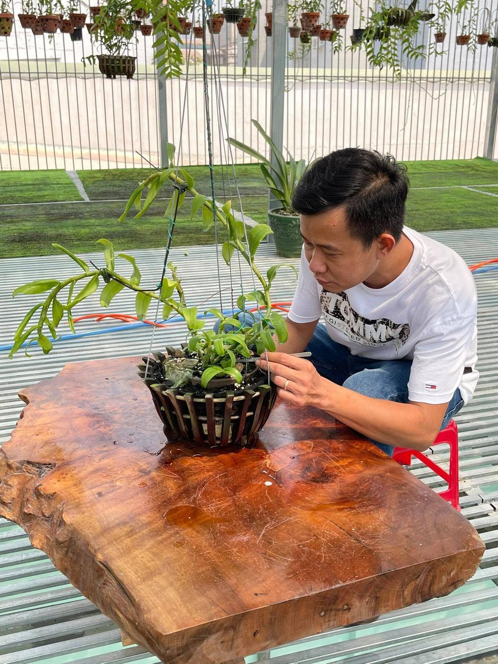 Phạm Minh Minh: Ông chủ vườn lan đi từ thử thách tới thành công Ảnh 7
