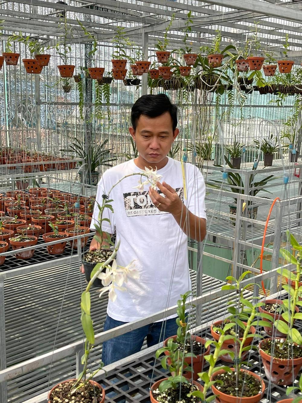 Phạm Minh Minh: Ông chủ vườn lan đi từ thử thách tới thành công Ảnh 6