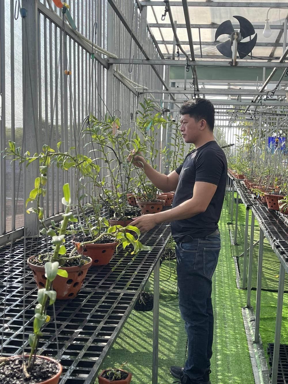 Doãn Chinh và hành trình theo đuổi hoa lan đầy thú vị Ảnh 2