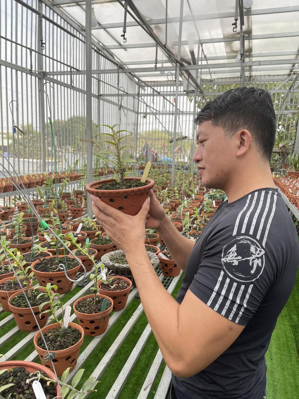 Doãn Chinh và hành trình theo đuổi hoa lan đầy thú vị Ảnh 1