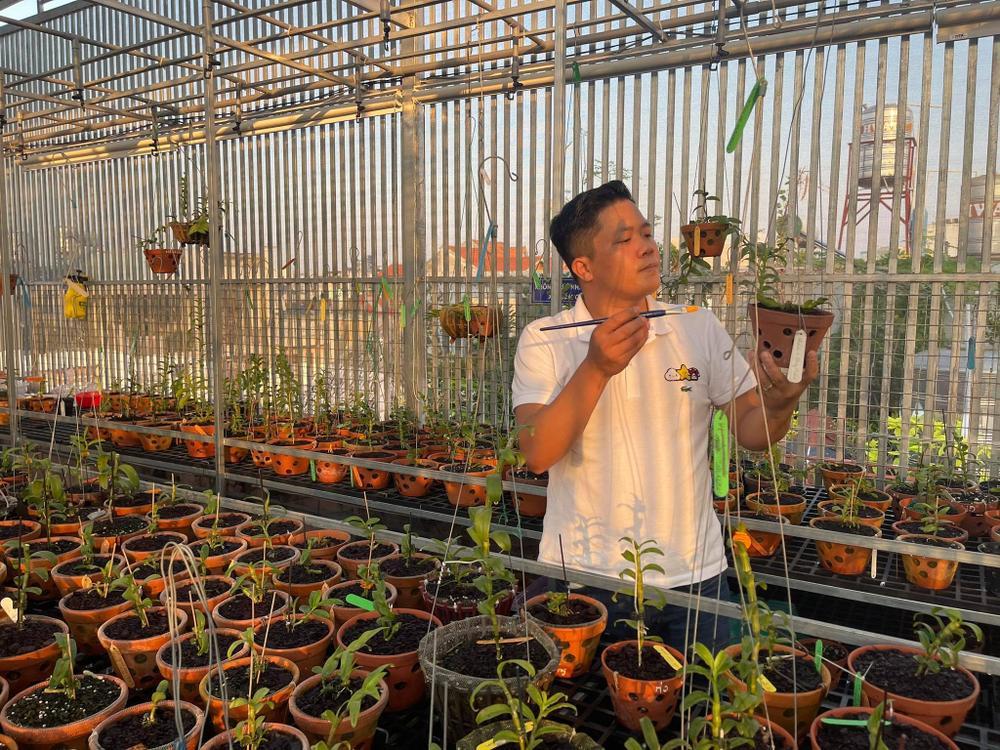 Ông chủ vườn lan Diệp Minh Tuyền: 'Tay ngang' lại thành công sớm Ảnh 2
