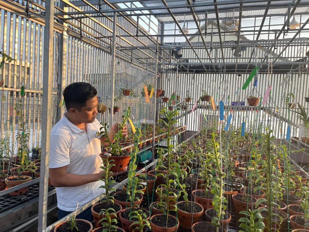 Ông chủ vườn lan Diệp Minh Tuyền: 'Tay ngang' lại thành công sớm Ảnh 4