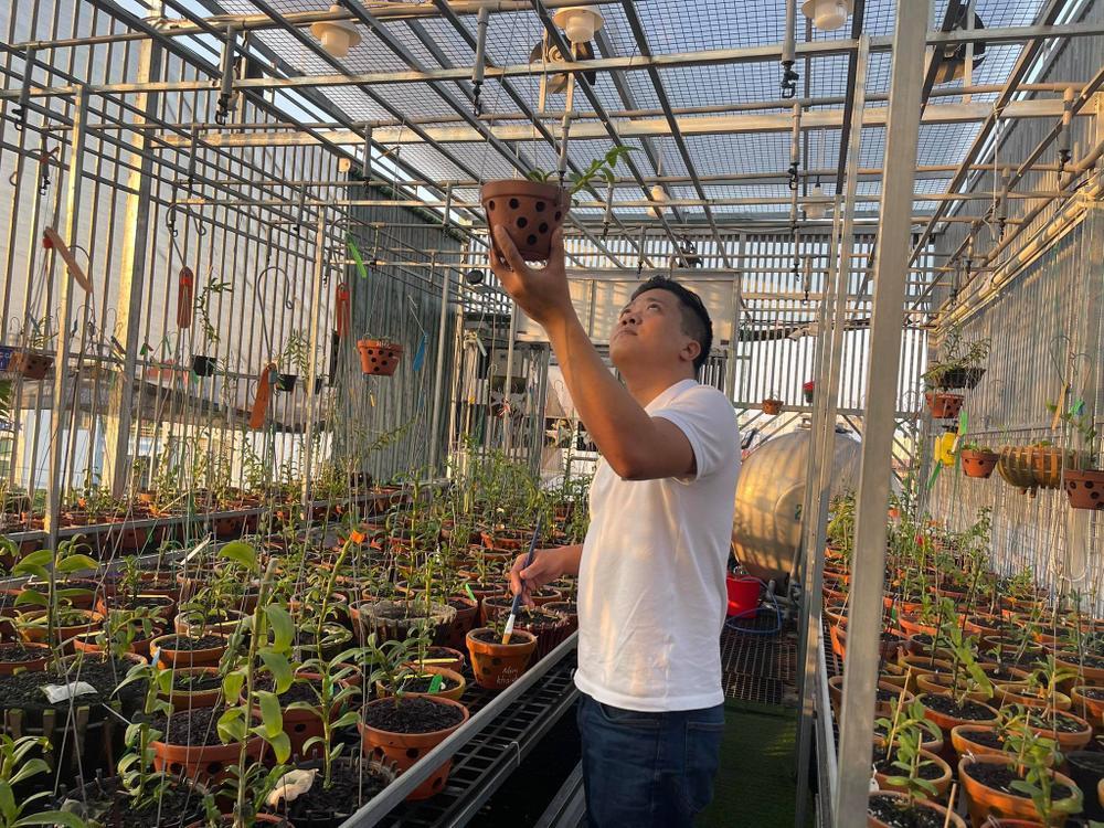 Ông chủ vườn lan Diệp Minh Tuyền: 'Tay ngang' lại thành công sớm Ảnh 5