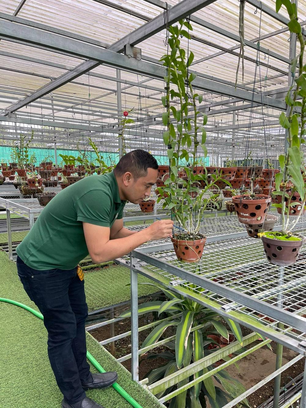 Chặng đường trở thành ông chủ vườn lan nổi tiếng của chàng trai 8X Nguyễn Tiến Huy Ảnh 5