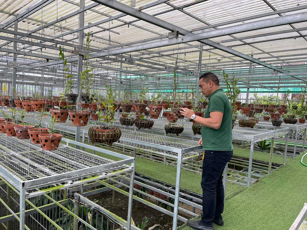 Chặng đường trở thành ông chủ vườn lan nổi tiếng của chàng trai 8X Nguyễn Tiến Huy Ảnh 9