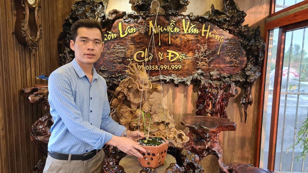 Ông chủ vườn lan Nguyễn Văn Hùng chia sẻ về thú chơi lan Ảnh 1
