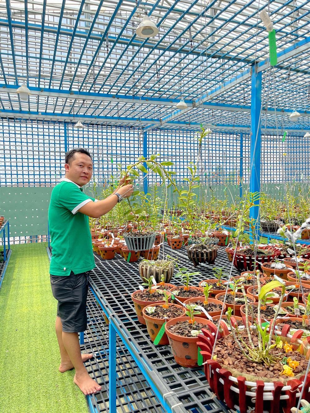 Những 'bí kíp' của nghệ nhân hoa lan Trần Tấn Hiền về xử lý cây lan và giá thể trước khi ghép Ảnh 2