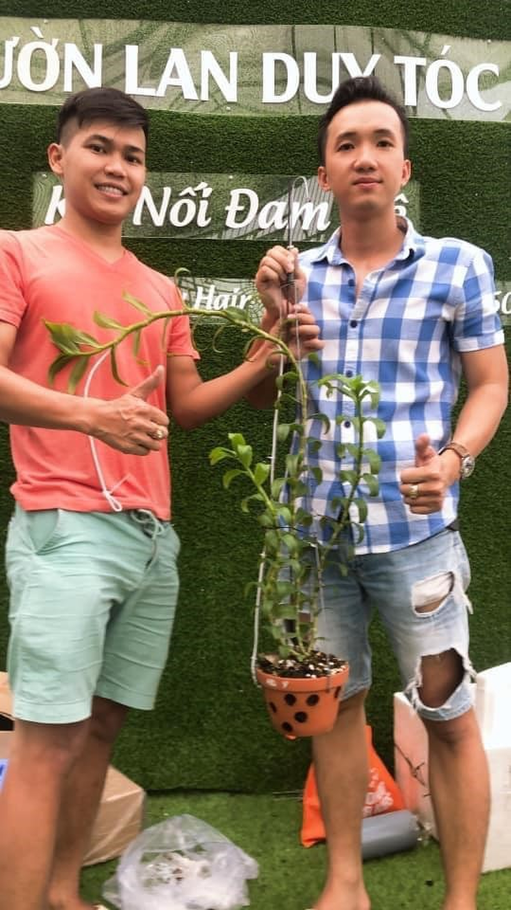 Ông chủ vườn lan Duy Tóc tiết lộ cách làm giàu nhờ kinh doanh lan đột biến Ảnh 6