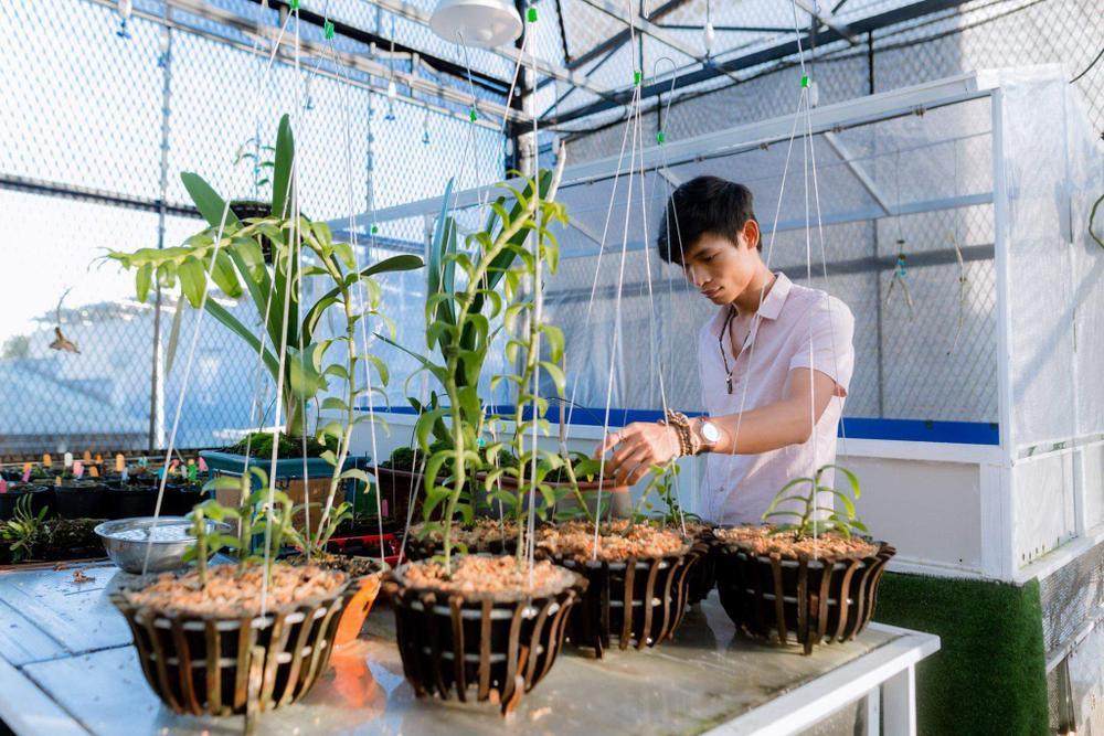 Đi từ nghèo khó, 9X Hạc Hoàng Huy thành công từ trồng hoa lan Ảnh 8