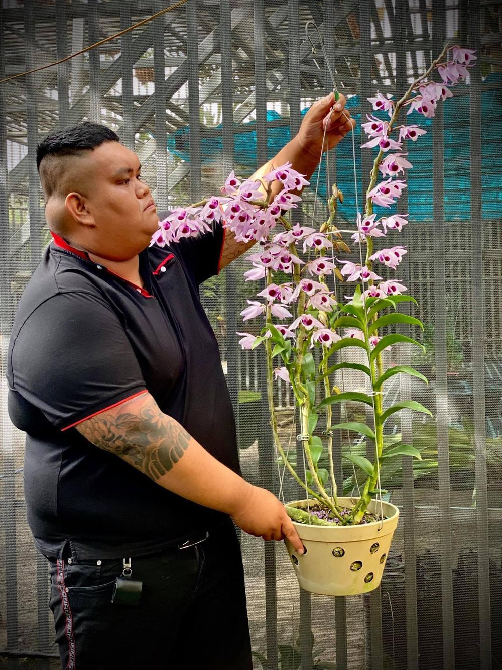 Nghệ nhân Tống Duy Thức: Hoa lan đã mang lại cho tôi nhiều điều đặc biệt Ảnh 1