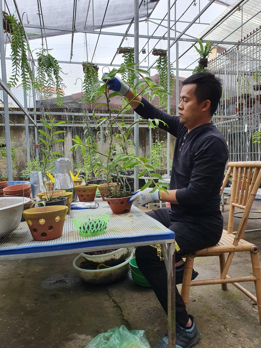 Ông chủ vườn lan Dương Xuân Tú thành công nhờ đam mê từ nhỏ Ảnh 4