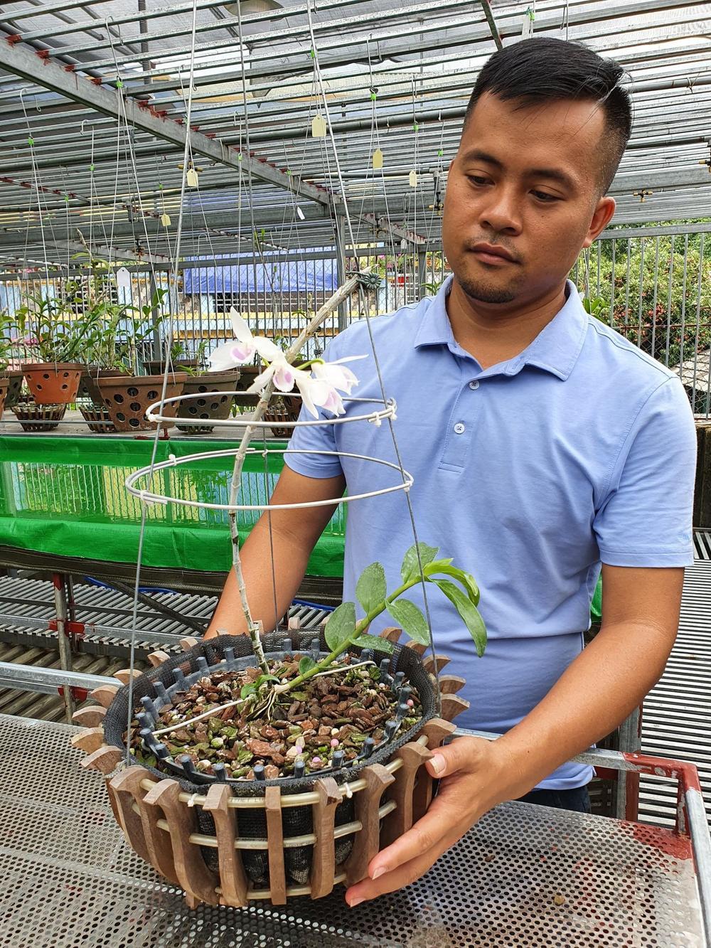 Ông chủ vườn lan Dương Xuân Tú thành công nhờ đam mê từ nhỏ Ảnh 5