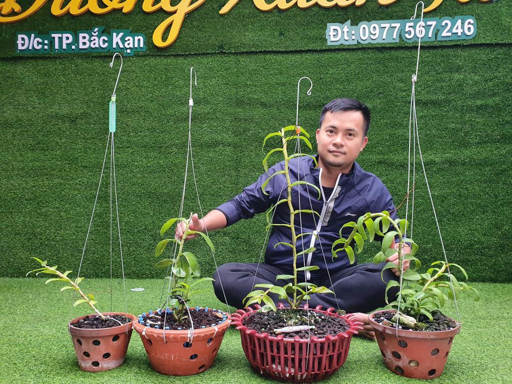 Ông chủ vườn lan Dương Xuân Tú thành công nhờ đam mê từ nhỏ Ảnh 7