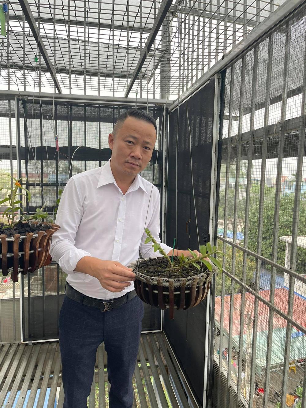 Ông chủ vườn lan Mạnh Quỳnh - Người chơi hoa lan bắt đầu từ sự… thờ ơ Ảnh 8