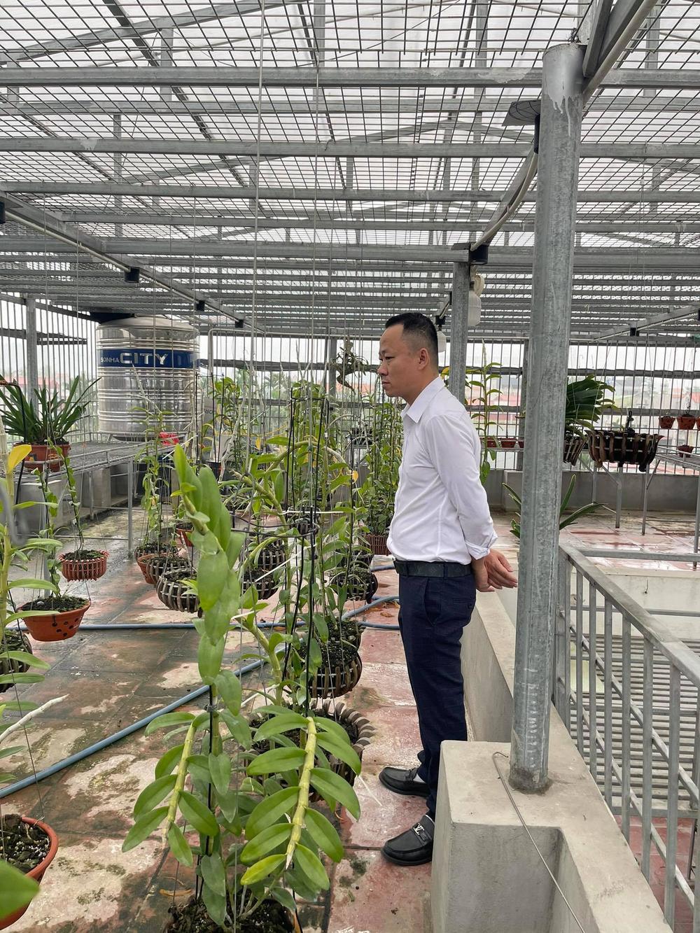 Ông chủ vườn lan Mạnh Quỳnh - Người chơi hoa lan bắt đầu từ sự… thờ ơ Ảnh 1