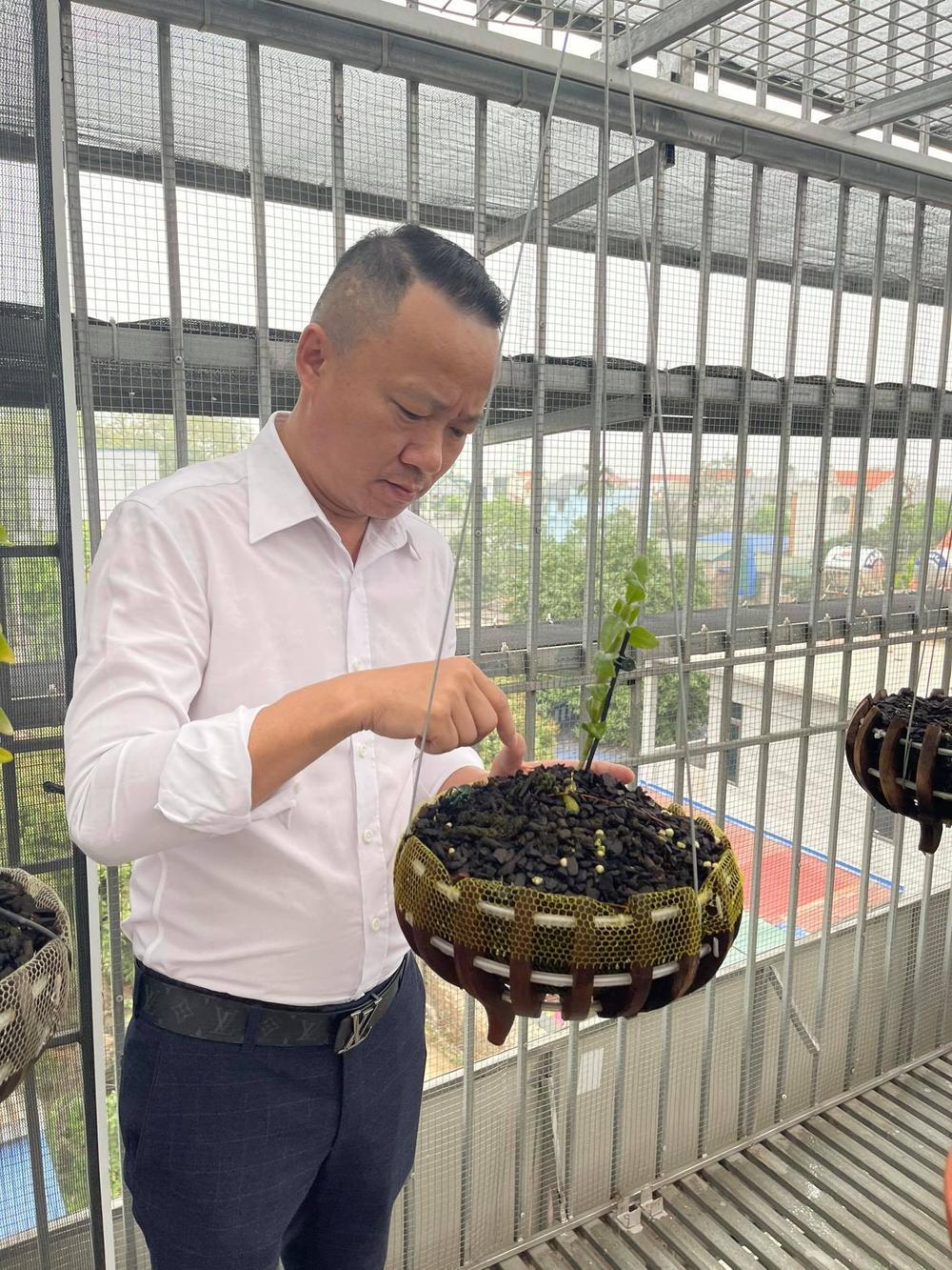 Ông chủ vườn lan Mạnh Quỳnh - Người chơi hoa lan bắt đầu từ sự… thờ ơ Ảnh 4